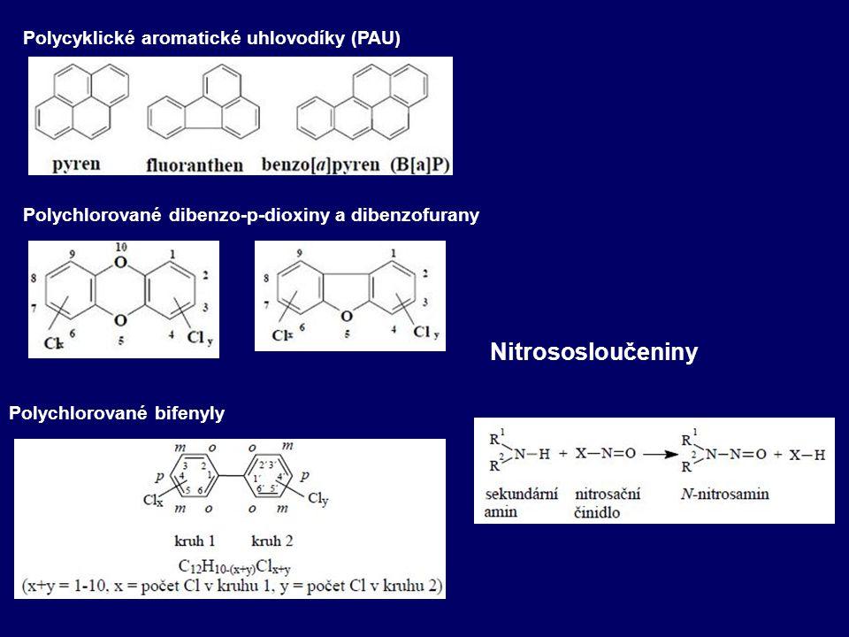 Nitrososloučeniny Polycyklické aromatické uhlovodíky (PAU)