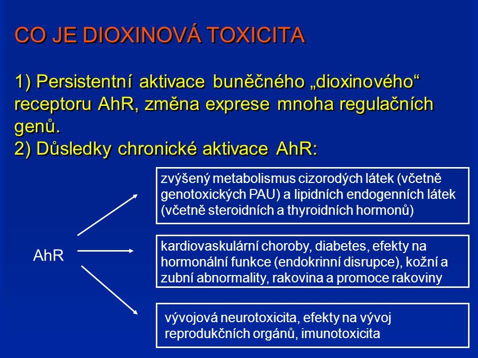 """CO JE DIOXINOVÁ TOXICITA 1) Persistentní aktivace buněčného """"dioxinového receptoru AhR, změna exprese mnoha regulačních genů. 2) Důsledky chronické aktivace AhR:"""