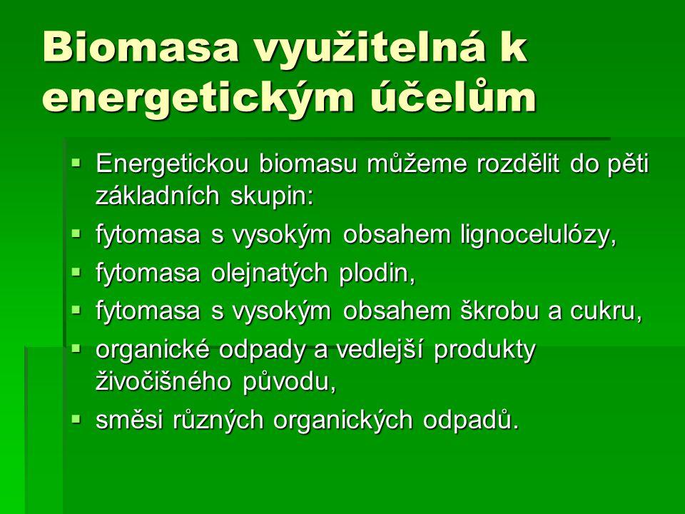 Biomasa využitelná k energetickým účelům