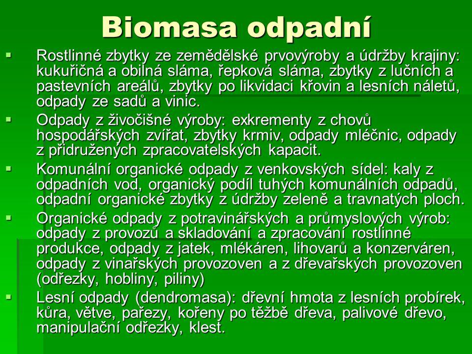 Biomasa odpadní