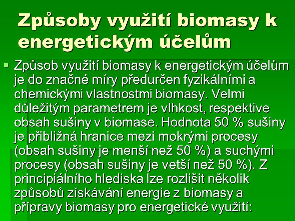 Způsoby využití biomasy k energetickým účelům