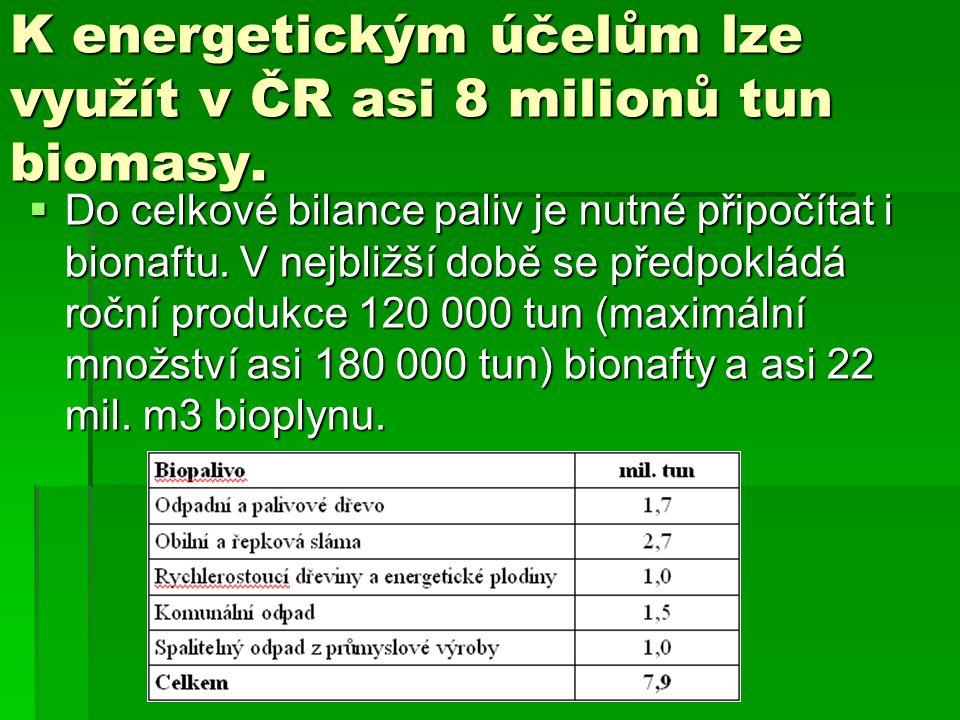 K energetickým účelům lze využít v ČR asi 8 milionů tun biomasy.