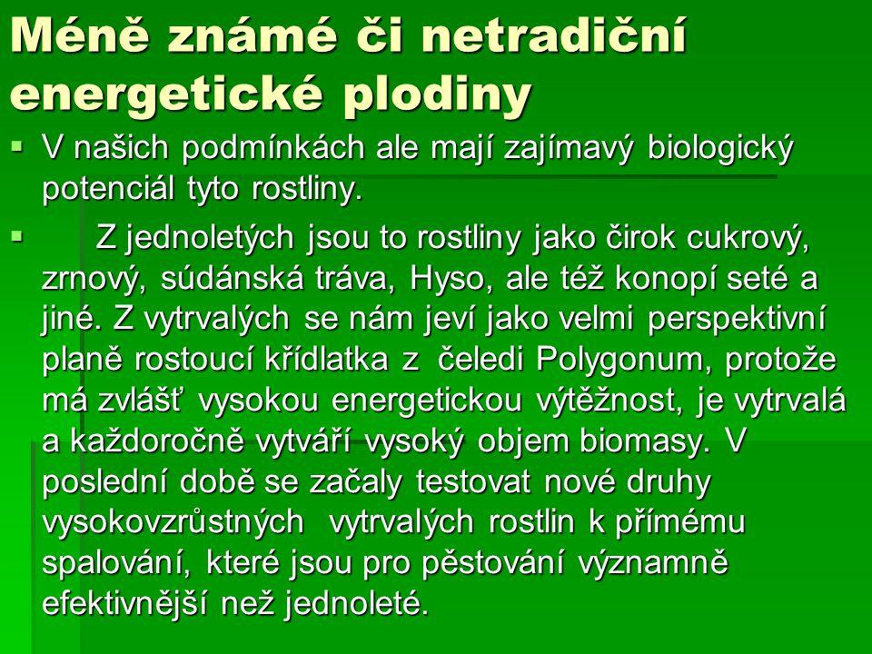 Méně známé či netradiční energetické plodiny