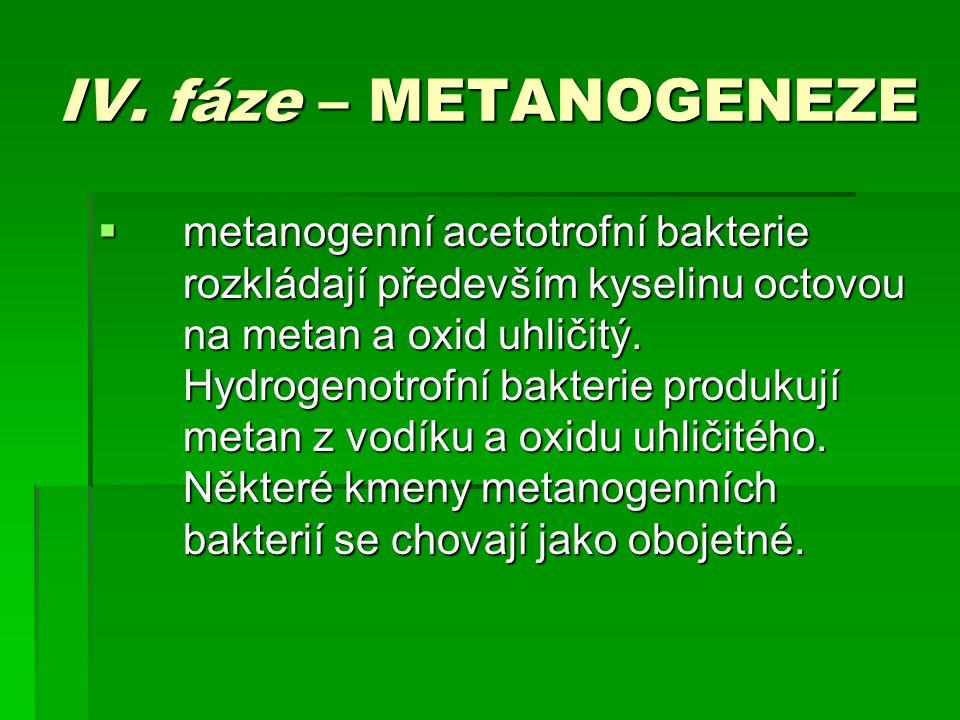 IV. fáze – METANOGENEZE