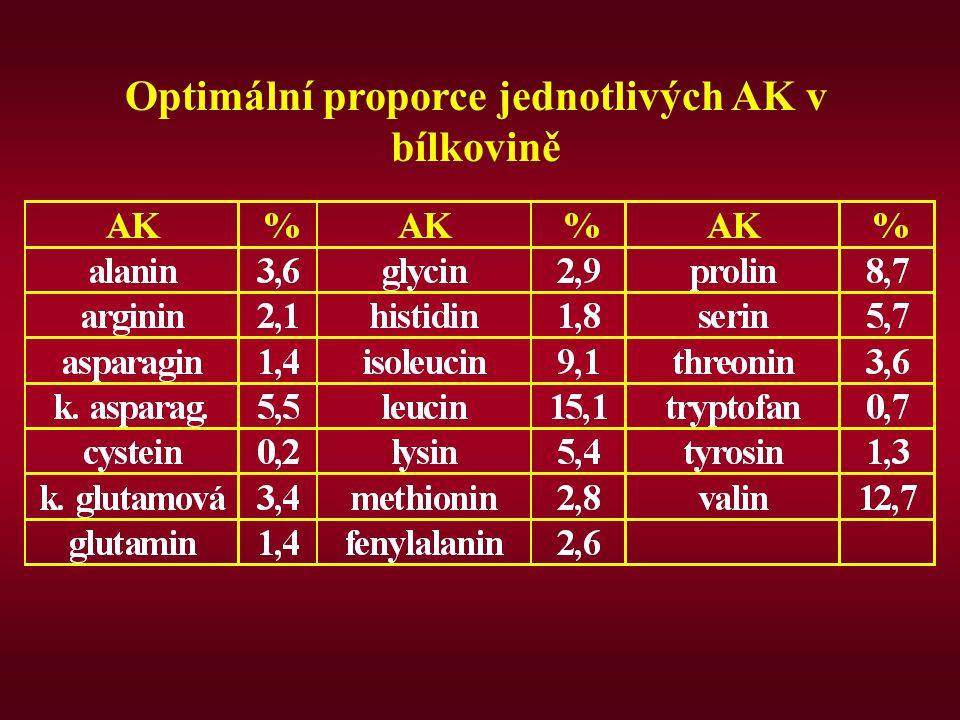 Optimální proporce jednotlivých AK v bílkovině