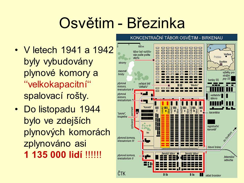 Osvětim - Březinka V letech 1941 a 1942 byly vybudovány plynové komory a ''velkokapacitní'' spalovací rošty.