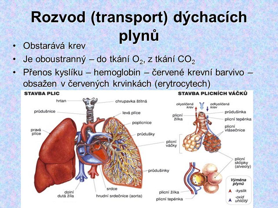 Rozvod (transport) dýchacích plynů