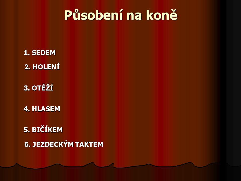 Působení na koně 1. SEDEM 2. HOLENÍ 3. OTĚŽÍ 4. HLASEM 5. BIČÍKEM