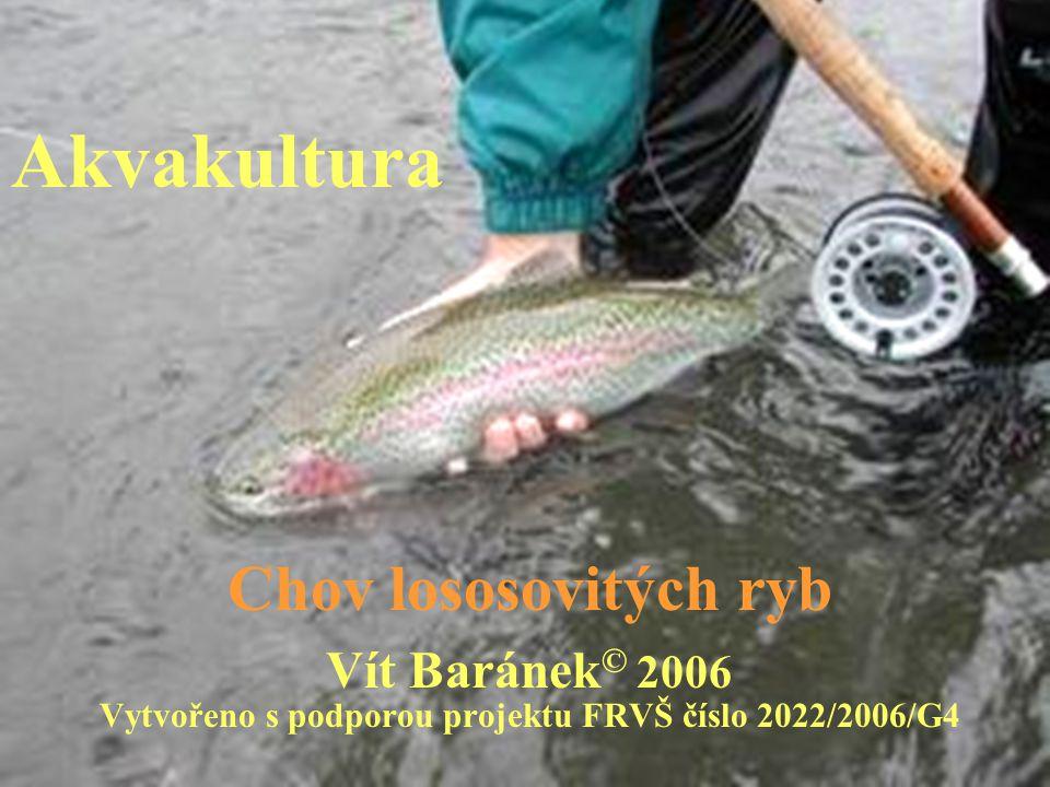 Vytvořeno s podporou projektu FRVŠ číslo 2022/2006/G4