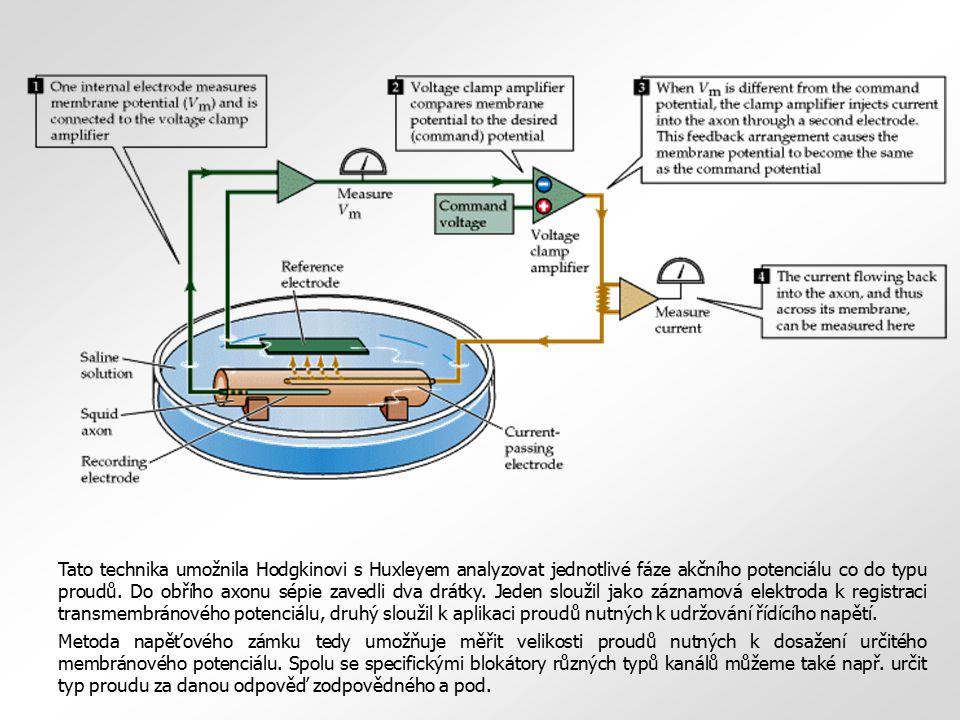 Tato technika umožnila Hodgkinovi s Huxleyem analyzovat jednotlivé fáze akčního potenciálu co do typu proudů. Do obřího axonu sépie zavedli dva drátky. Jeden sloužil jako záznamová elektroda k registraci transmembránového potenciálu, druhý sloužil k aplikaci proudů nutných k udržování řídícího napětí.