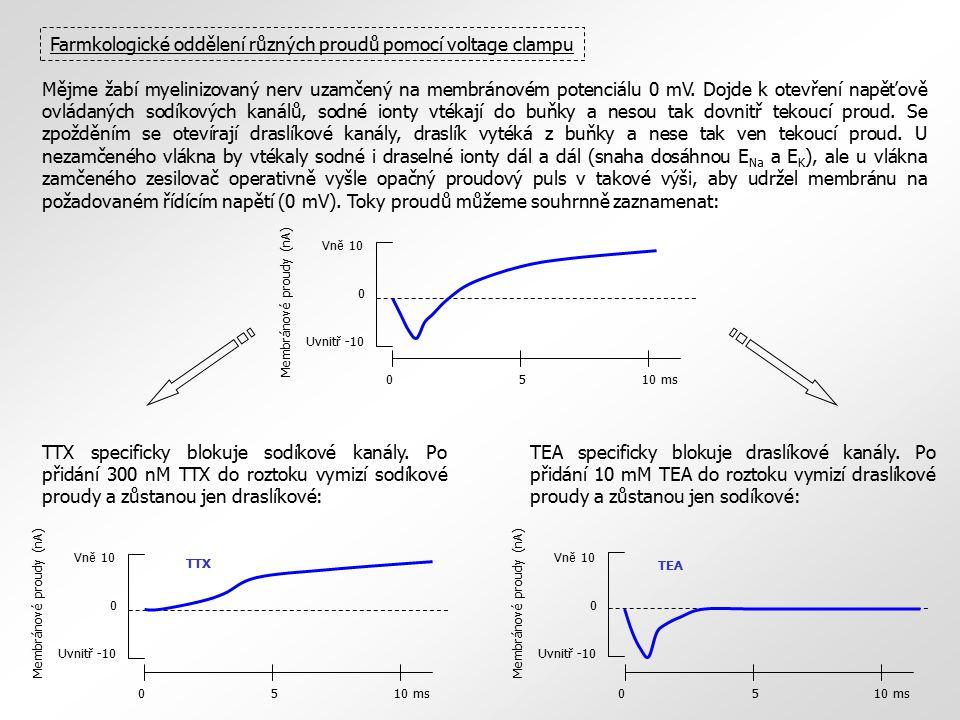 Farmkologické oddělení různých proudů pomocí voltage clampu