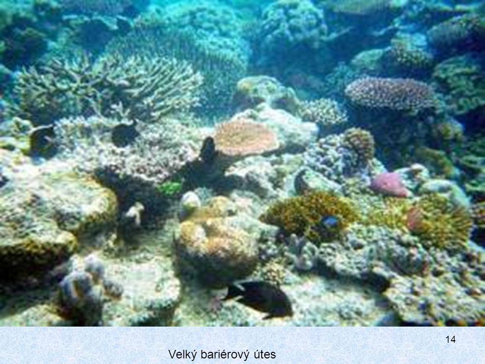 Velký bariérový útes