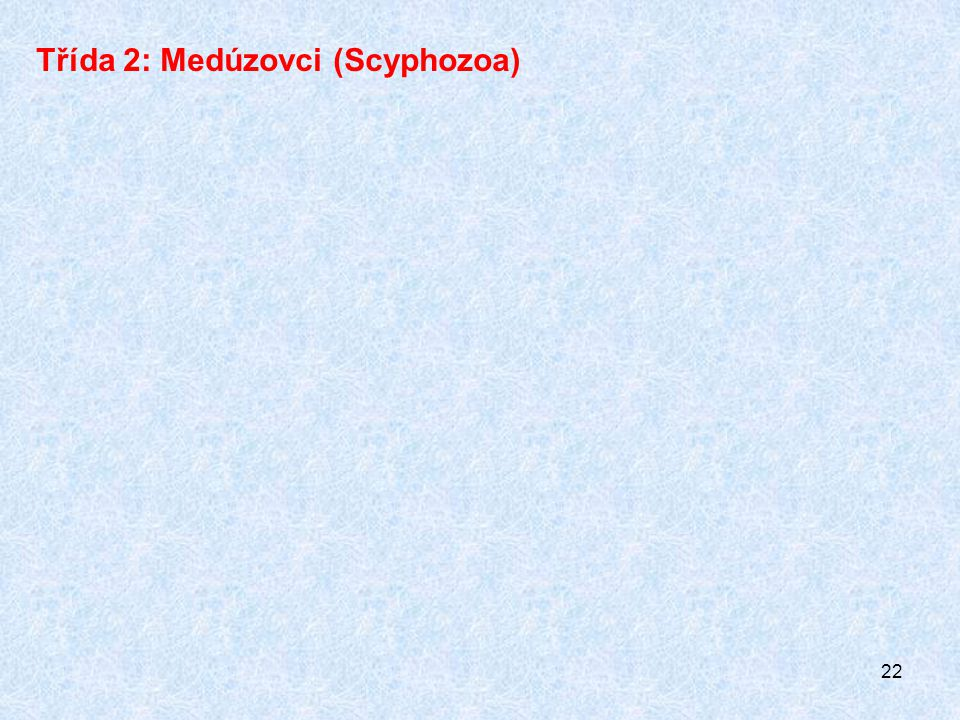 Třída 2: Medúzovci (Scyphozoa)