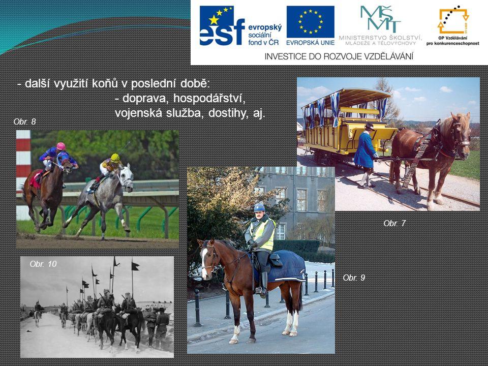 - další využití koňů v poslední době: - doprava, hospodářství,