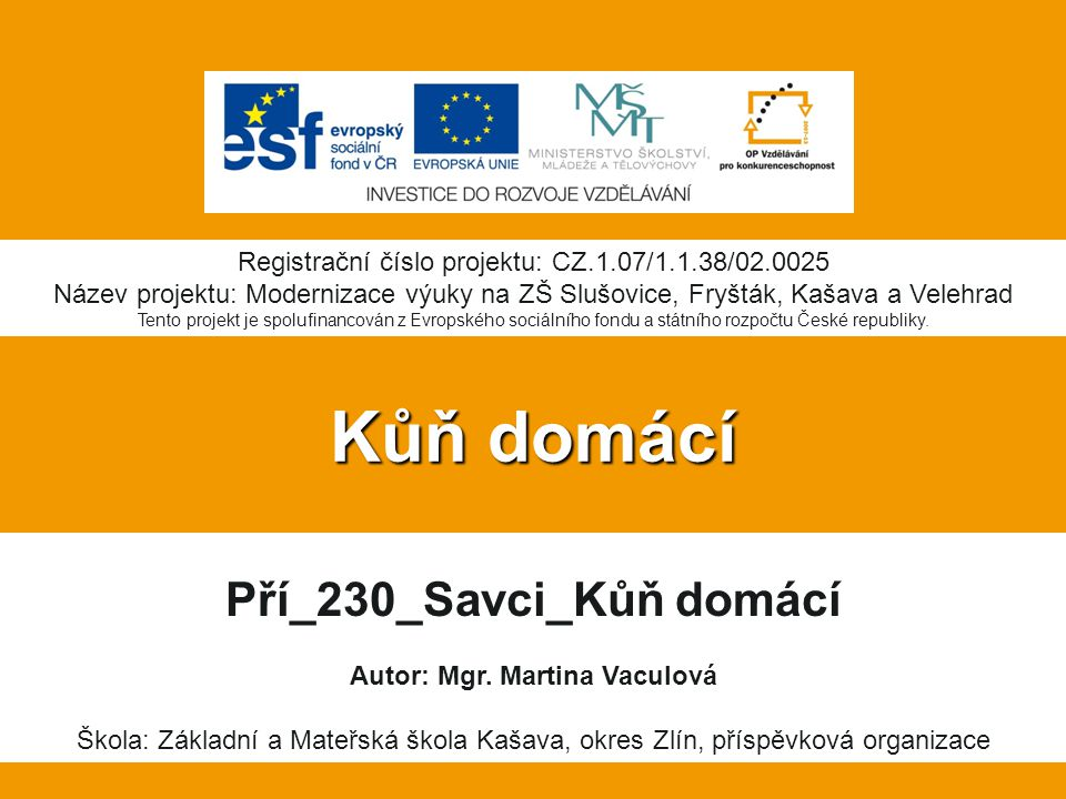 Pří_230_Savci_Kůň domácí Autor: Mgr. Martina Vaculová