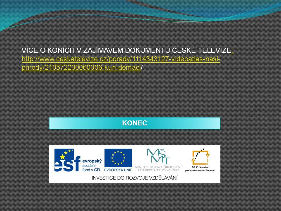 VÍCE O KONÍCH V ZAJÍMAVÉM DOKUMENTU ČESKÉ TELEVIZE: http://www