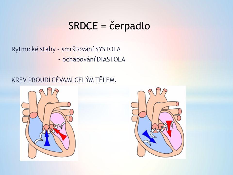 SRDCE = čerpadlo Rytmické stahy – smršťování SYSTOLA