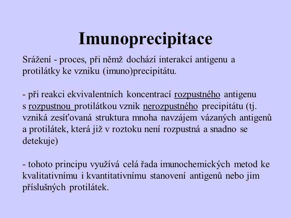 Imunoprecipitace Srážení - proces, při němž dochází interakcí antigenu a protilátky ke vzniku (imuno)precipitátu.