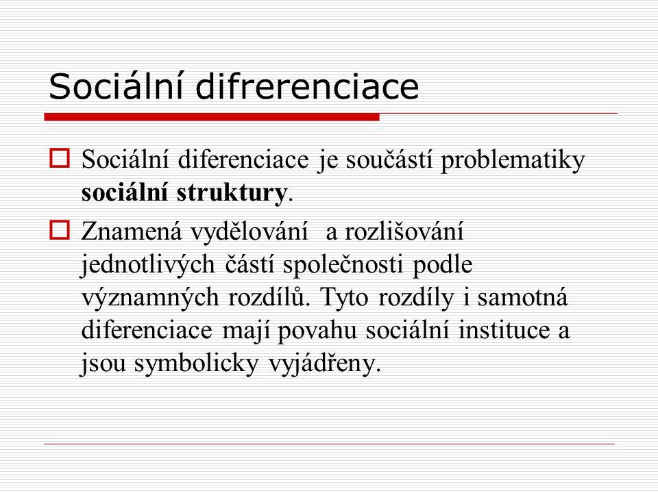 Sociální difrerenciace