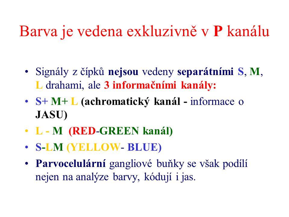 Barva je vedena exkluzivně v P kanálu