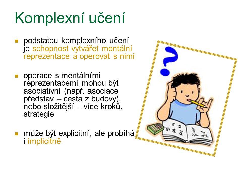 Komplexní učení podstatou komplexního učení je schopnost vytvářet mentální reprezentace a operovat s nimi.