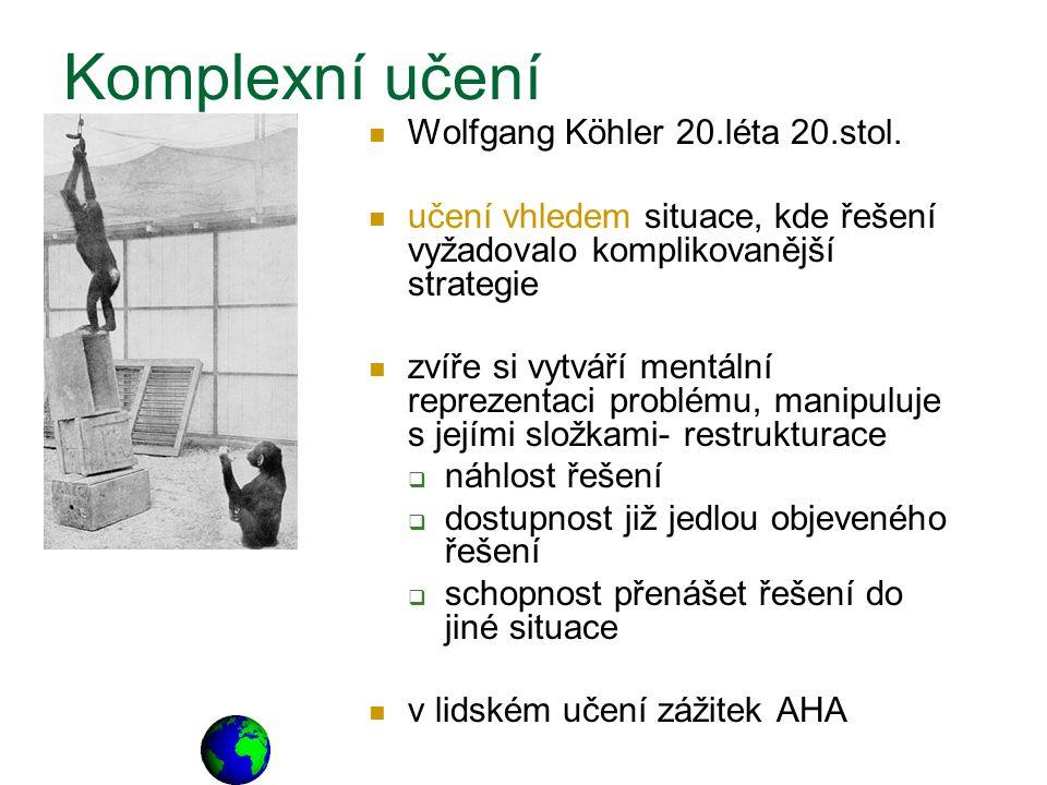 Komplexní učení Wolfgang Köhler 20.léta 20.stol.