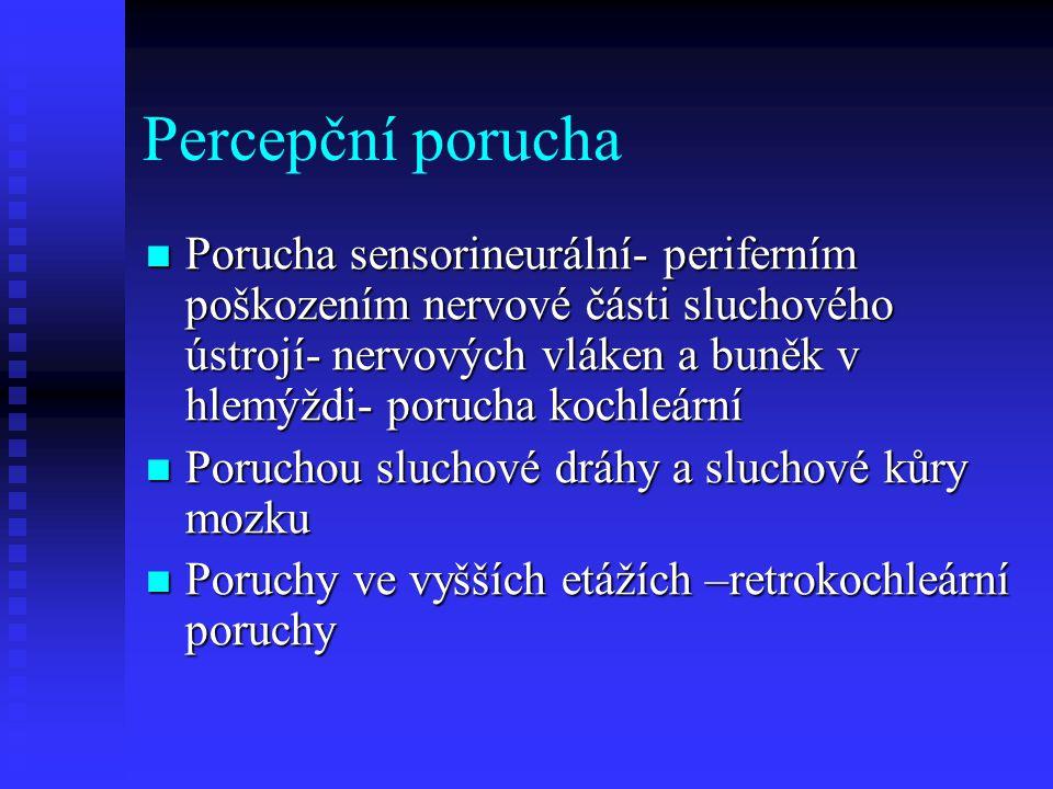 Percepční porucha
