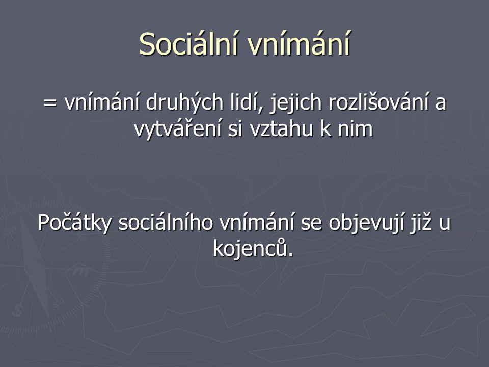Sociální vnímání = vnímání druhých lidí, jejich rozlišování a vytváření si vztahu k nim.