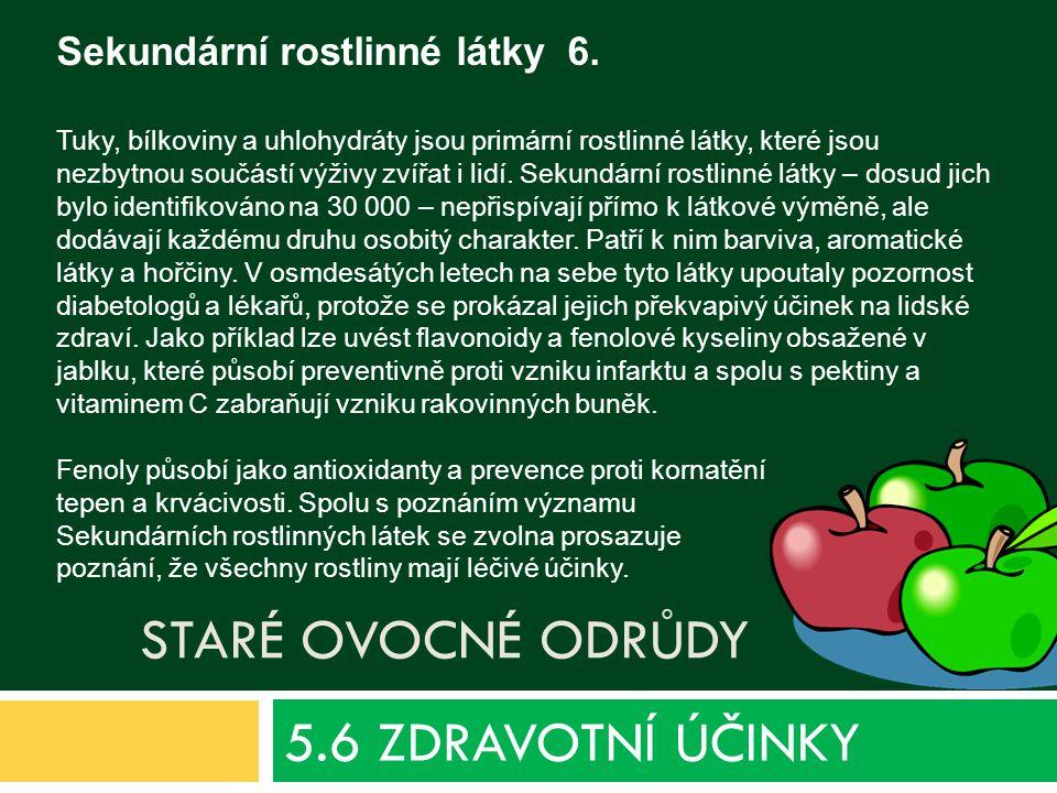 5.6 ZDRAVOTNÍ ÚČINKY Sekundární rostlinné látky 6. Staré ovocné odrůdy