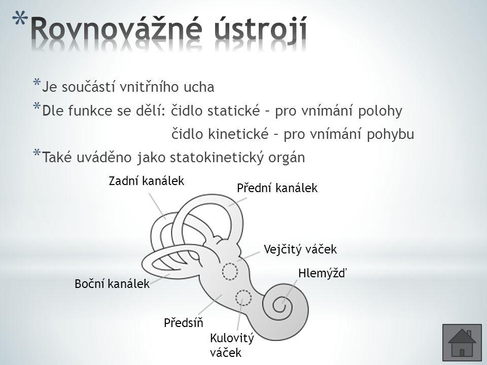 Rovnovážné ústrojí Je součástí vnitřního ucha