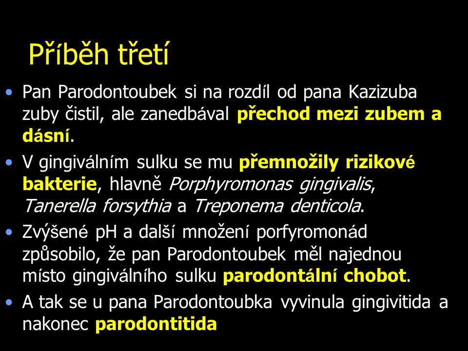 Příběh třetí Pan Parodontoubek si na rozdíl od pana Kazizuba zuby čistil, ale zanedbával přechod mezi zubem a dásní.