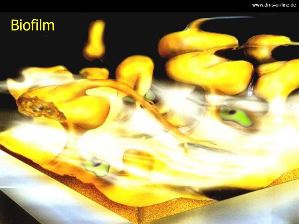 www.dms-online.de Biofilm