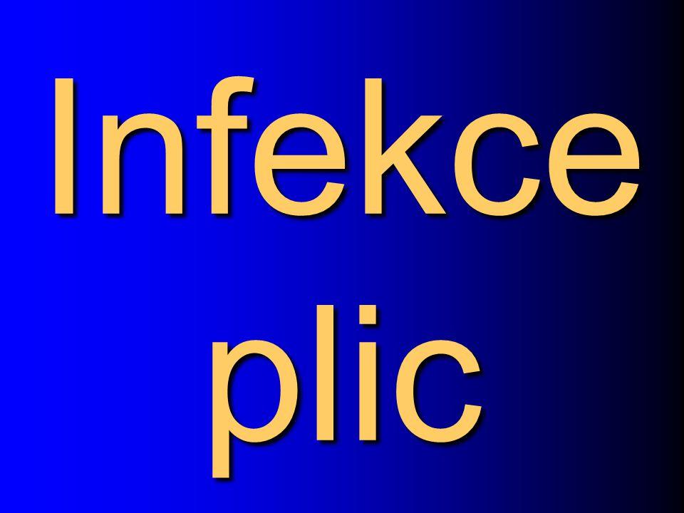 Infekce plic