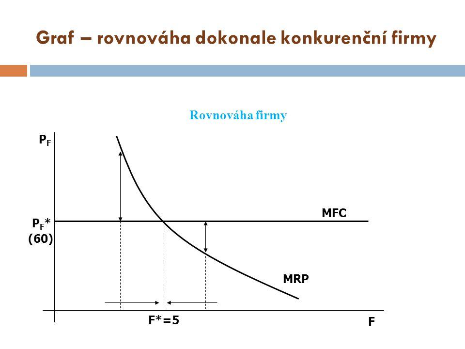 Graf – rovnováha dokonale konkurenční firmy