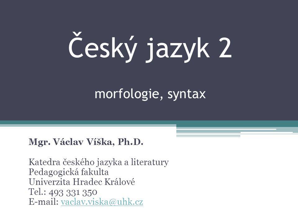 Český jazyk 2 morfologie, syntax