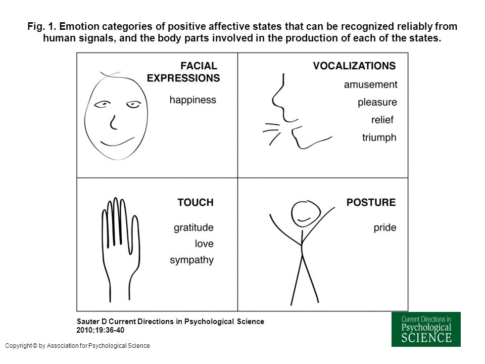 Fig. 1. Emotion categories of positive affective states that can be recognized reliably from human signals, and the body parts involved in the production of each of the states.