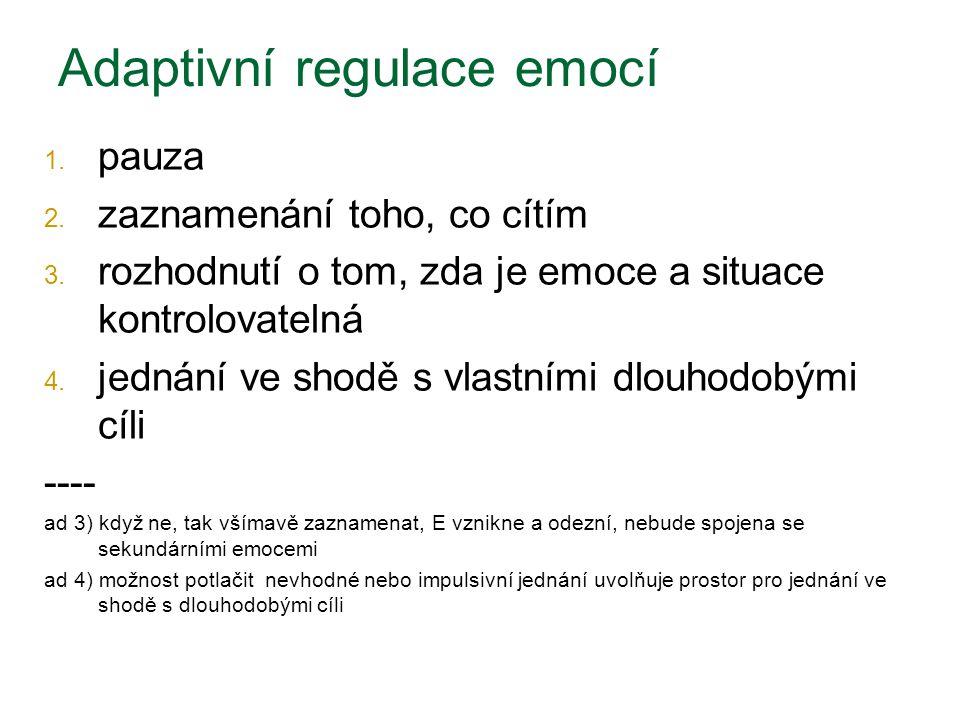 Adaptivní regulace emocí