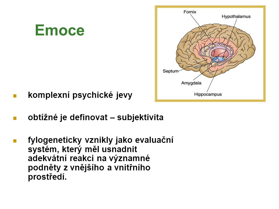 Emoce komplexní psychické jevy obtížné je definovat – subjektivita