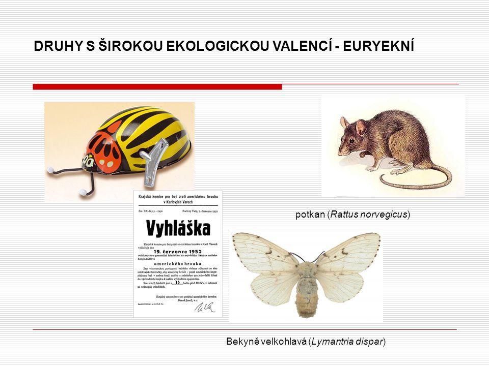 DRUHY S ŠIROKOU EKOLOGICKOU VALENCÍ - EURYEKNÍ