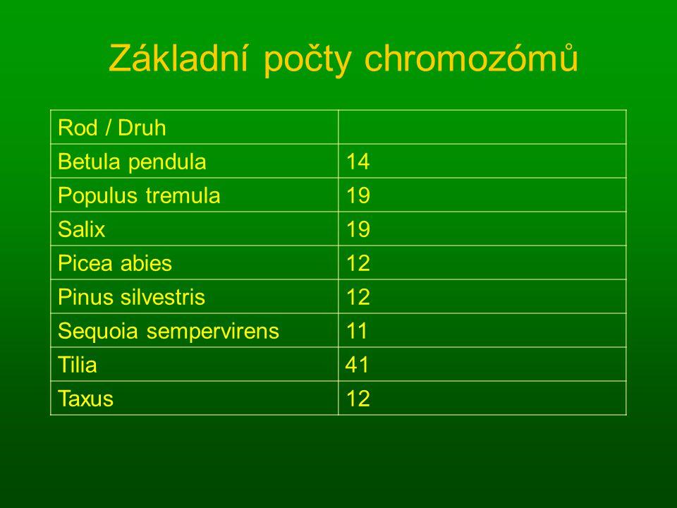 Základní počty chromozómů