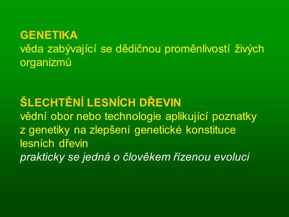 GENETIKA věda zabývající se dědičnou proměnlivostí živých organizmů. ŠLECHTĚNÍ LESNÍCH DŘEVIN.