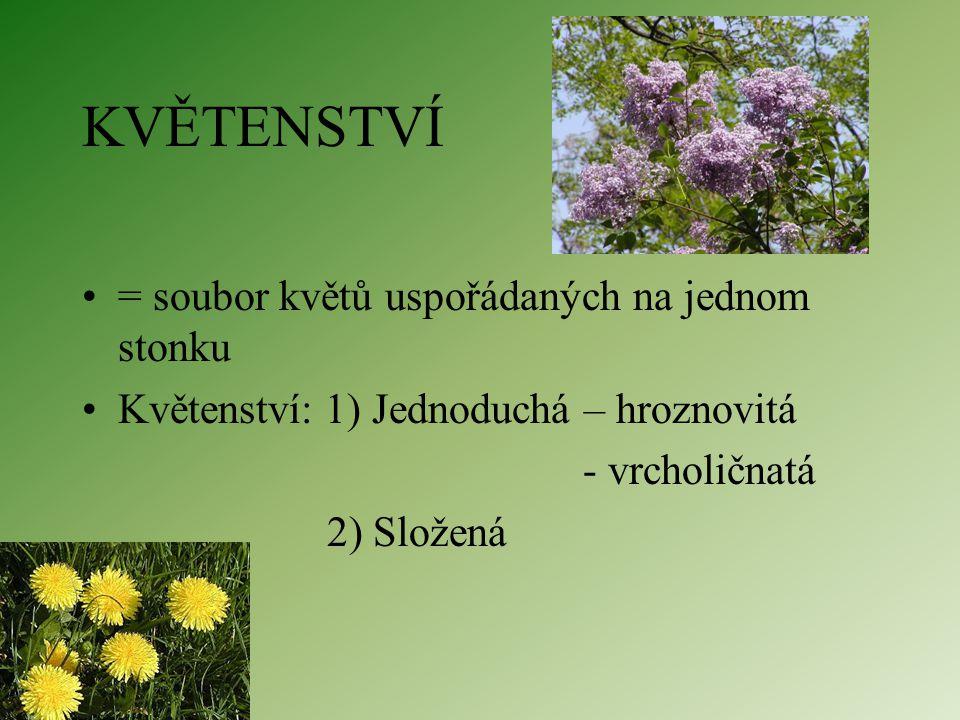 KVĚTENSTVÍ = soubor květů uspořádaných na jednom stonku