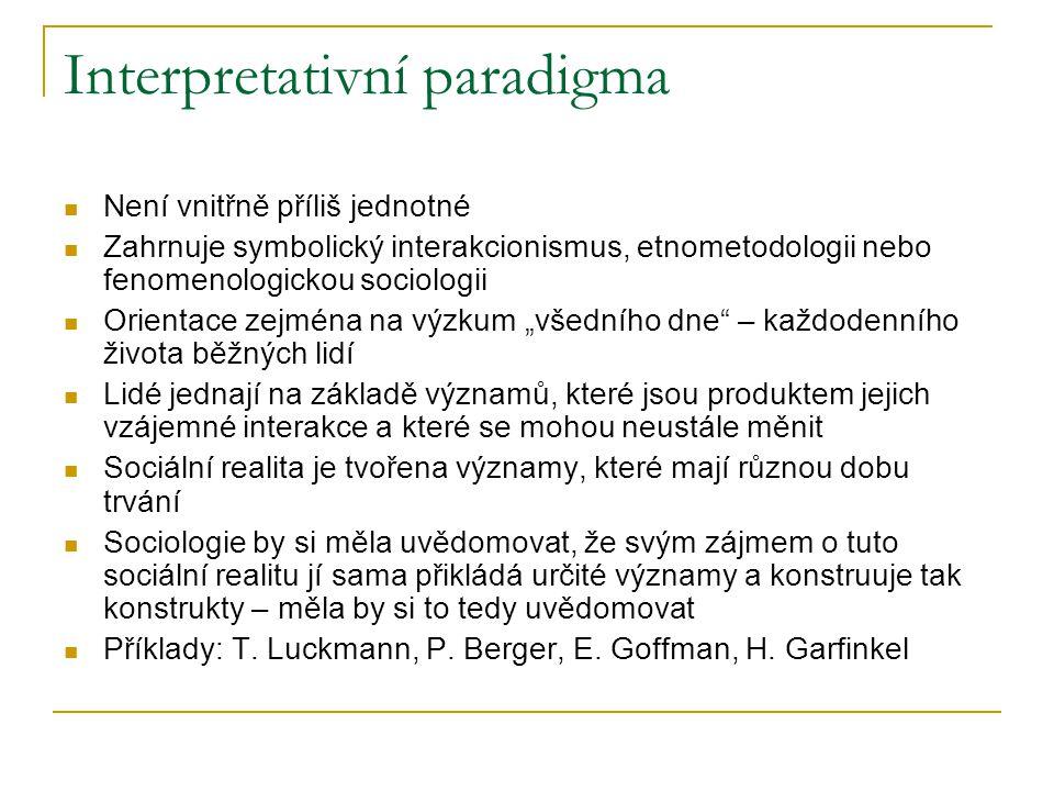 Interpretativní paradigma