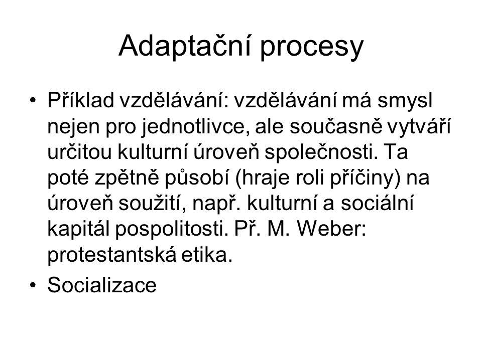 Adaptační procesy