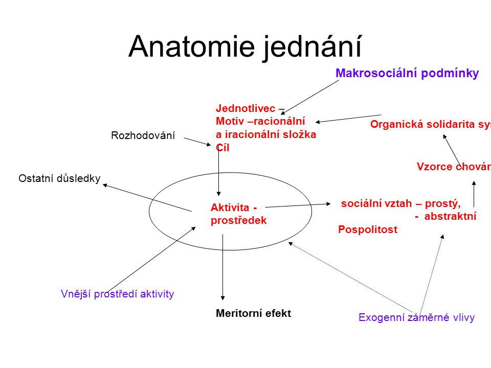 Anatomie jednání Makrosociální podmínky Jednotlivec –