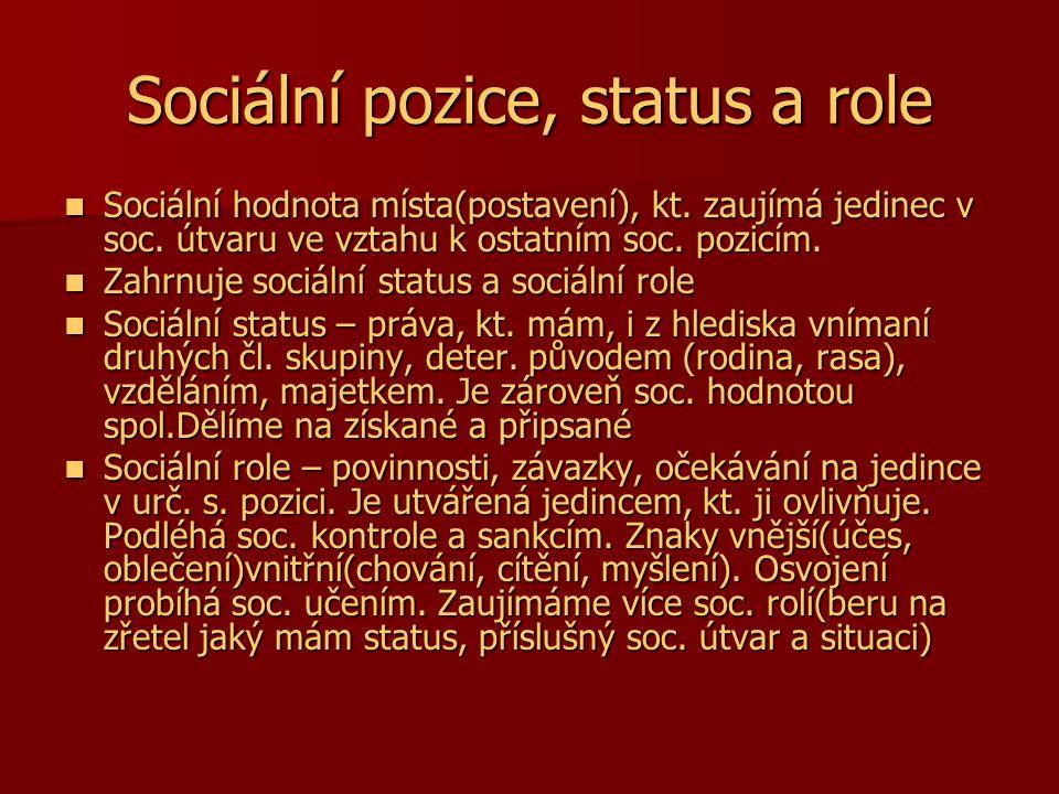 Sociální pozice, status a role