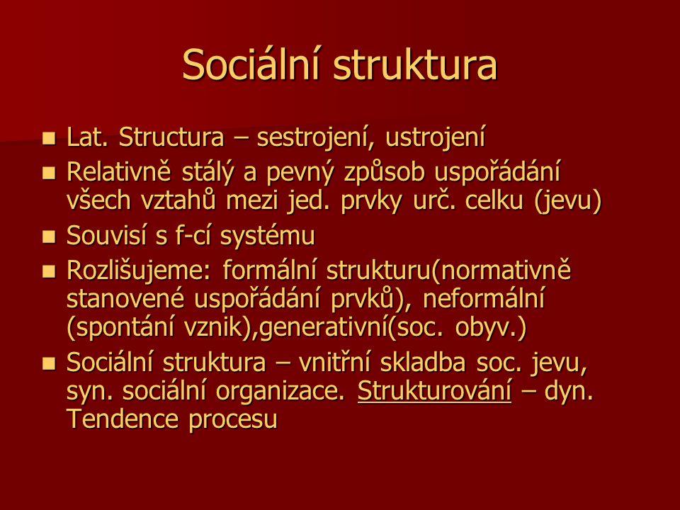 Sociální struktura Lat. Structura – sestrojení, ustrojení