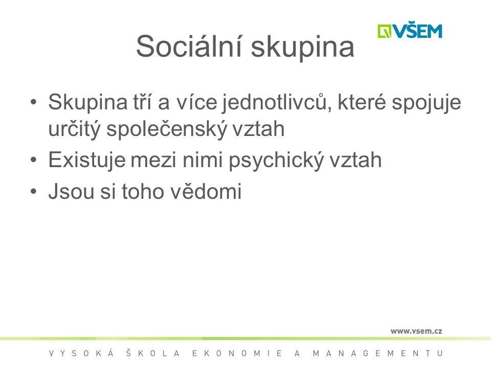 Sociální skupina Skupina tří a více jednotlivců, které spojuje určitý společenský vztah. Existuje mezi nimi psychický vztah.