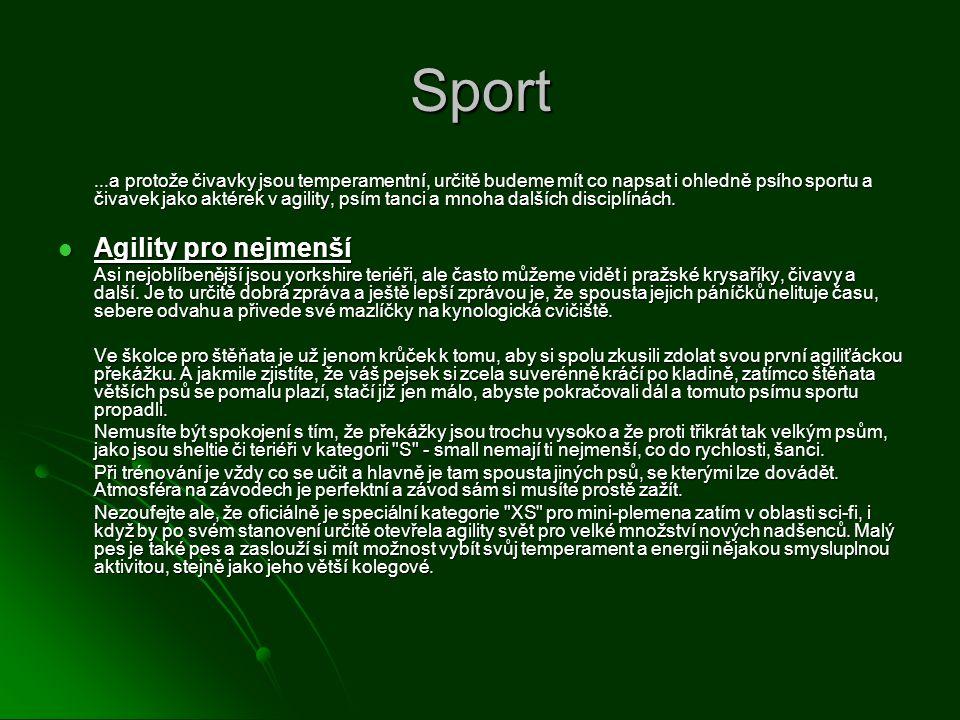 Sport Agility pro nejmenší
