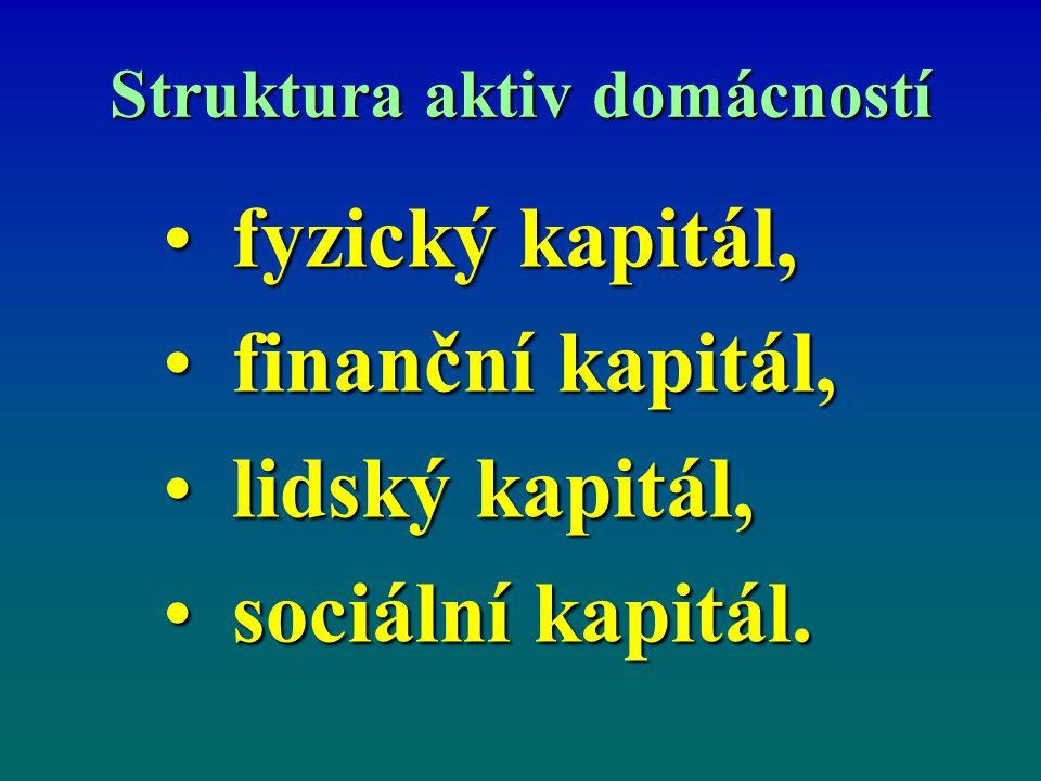 Struktura aktiv domácností